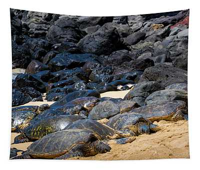 There Has Got To Be More Room On This Beach  Tapestry