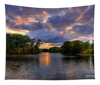 Thomas Lake Park In Eagan On A Glorious Summer Evening Tapestry