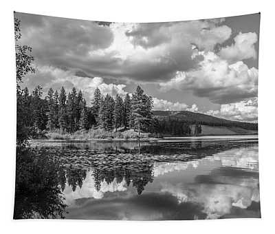 Thompson Lake In Black And White Tapestry