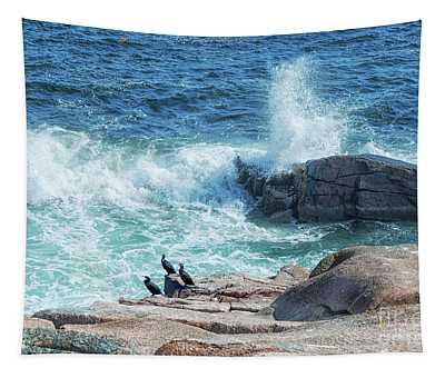 Three Cormorants At Monument Cove, Acadia National Park Tapestry