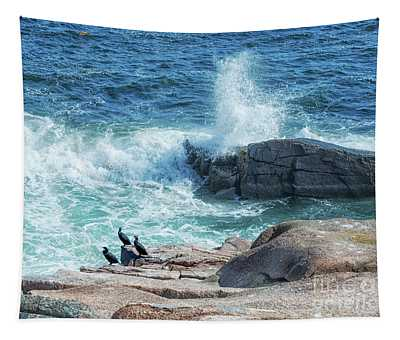 Three Cormorants At Monument Cove, Acadia National Park Tapestry