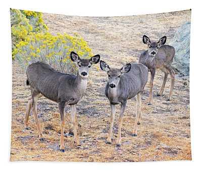 Three Mule Deer In High Desert Tapestry