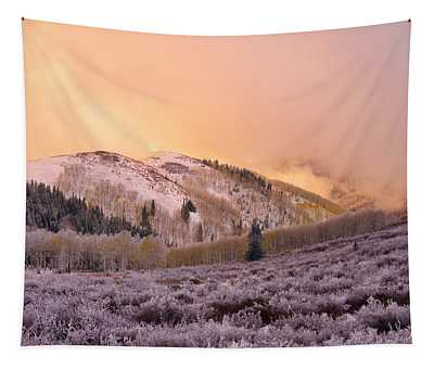 Touch Of Winter Tapestry