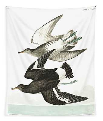 Townsends Sandpiper Tapestry