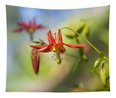 Trailside Columbine - Saddle Mountain Tapestry