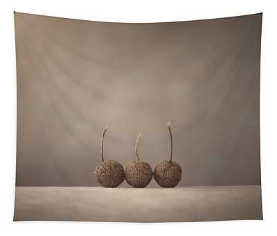 Tree Seed Pods Tapestry