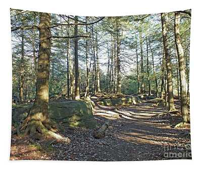 Trees Growing On Top Of Boulders - Ricketts Glen Tapestry