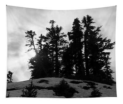 Trees Silhouettes Tapestry