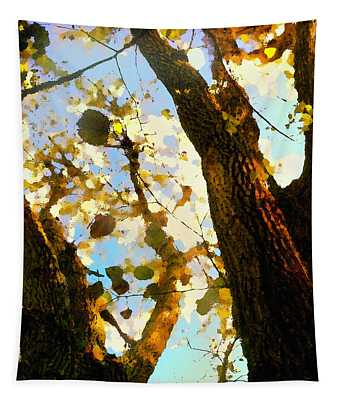 Tapestry featuring the digital art Treetop Abstract-look Up A Tree by Shelli Fitzpatrick