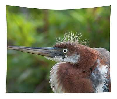 Tricolored Heron - Bad Hair Day Tapestry