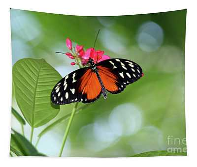 Tropical Hecale Butterfly Tapestry