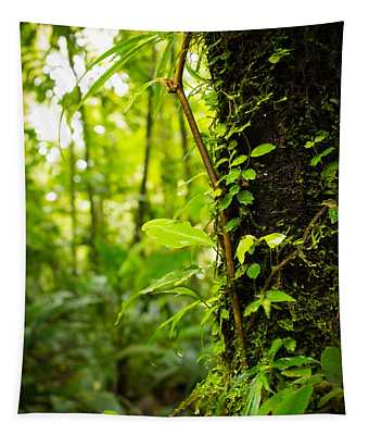 Trunk Of The Jungle Tapestry