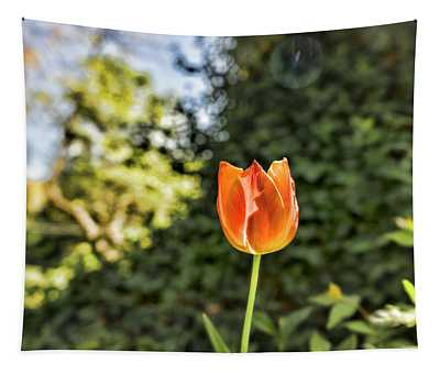 Tulip Time Tapestry