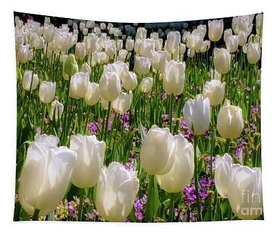Tulips In White Tapestry