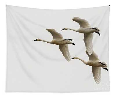 Tundra Swans In Flight 1 Tapestry