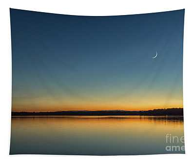 Twilight Tapestry