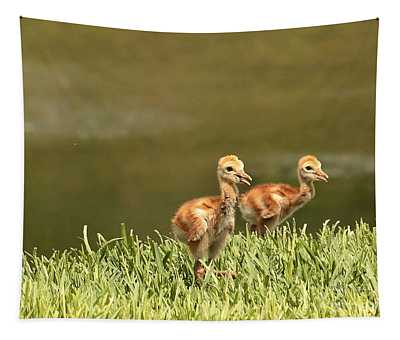 Two Chicks Tapestry