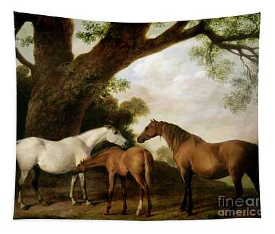 Two Mares And A Foal Tapestry