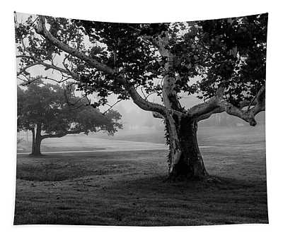 Two Trees Colt State Park Tapestry
