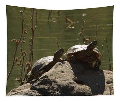 Two Turtles On A Rock Tapestry
