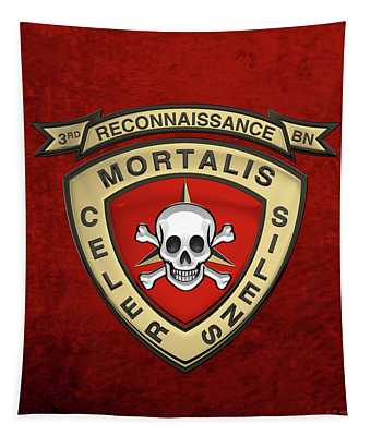 U S M C  3rd Reconnaissance Battalion -  3rd Recon Bn Insignia Over Red Velvet Tapestry