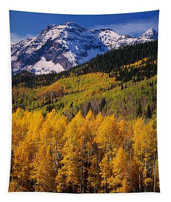 Uncompahgre National Forest Co Usa Tapestry