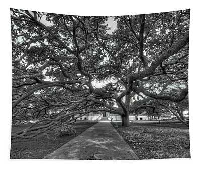 Under The Century Tree - Black And White Tapestry