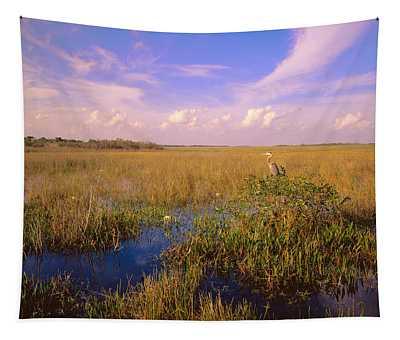 Usa, Florida, Everglades National Park Tapestry