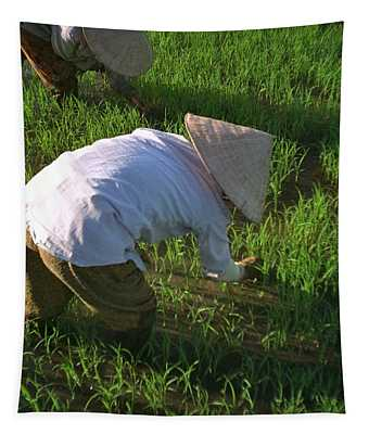Vietnam Paddy Fields Tapestry