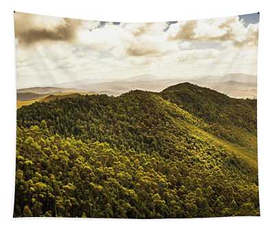View From Halfway Up Mount Zeehan Tapestry