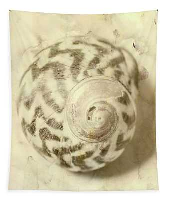 Vintage Seashell Still Life Tapestry