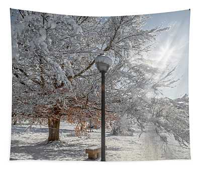 Virginia Tech Campus Snowy Brilliance Tapestry