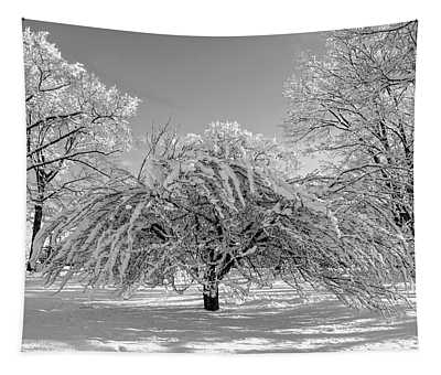 Virginia Tech Campus The Snowy Tree Bw Tapestry