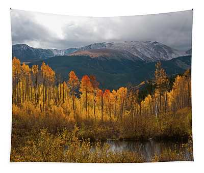 Vivid Autumn Aspen And Mountain Landscape Tapestry
