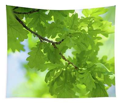Vivid Greenery Of Oak Tree Leaves Tapestry