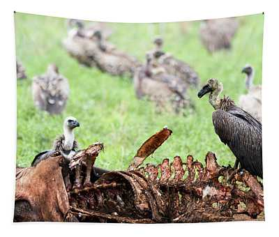 Vultures Eating A Wildebeest Tapestry