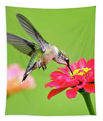 Waiting In The Wings Hummingbird Square Tapestry