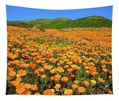 Walker Canyon Wildflowers Tapestry