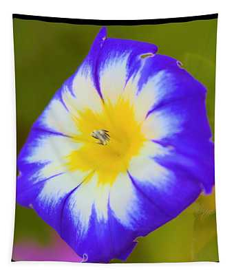 Wallflower Tapestry