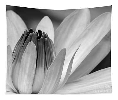 Water Lily Opening Tapestry