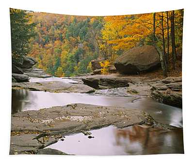 Waterfall In The Forest, Kaaterskill Tapestry