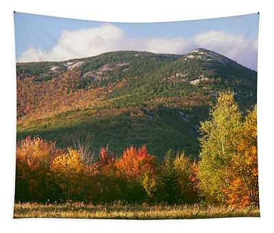 Welch And Dickey Mountains Tapestry