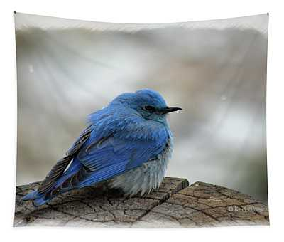 Western Bluebird On Cold Day Tapestry