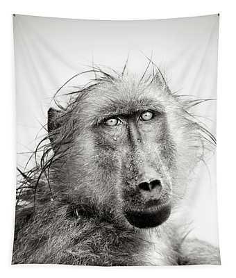 Wet Baboon Portrait Tapestry