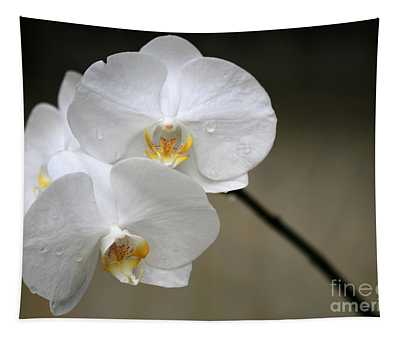 Wet White Orchids Tapestry