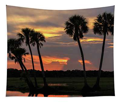 Wetlands Sunset Tapestry