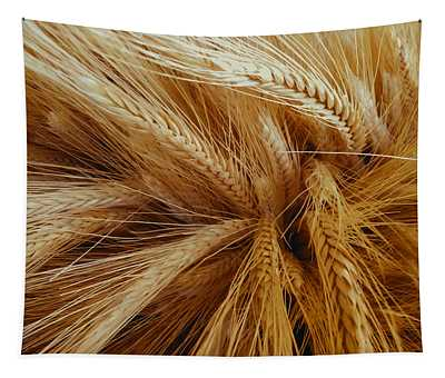 Wheat In The Sunset Tapestry