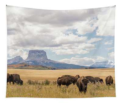 Where The Buffalo Roam Tapestry