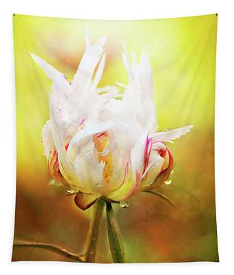 White Chinese Peony Laden With Raindrops Tapestry