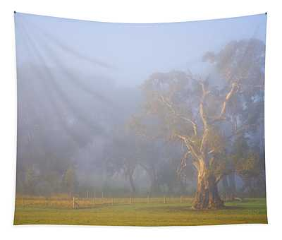 White Gum Morning Tapestry